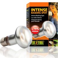 Exo Terra Intense Basking Spot Lamp
