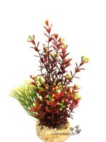 Sydeco Flowering Plant red
