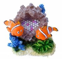 Clown fish 8