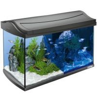 Tetra AquaArt LED Aquarium 60L