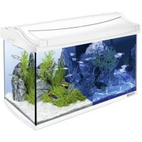 Tetra AquaArt LED Aquarium 60L balts