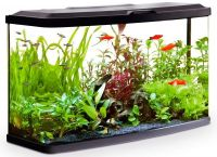 Fluval Vue Aquarium Kit 87L