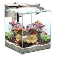 Aquael Nano Reef Duo 35 White