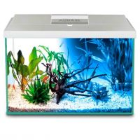 Aquael AQUARIUM SET 65 III (balts)