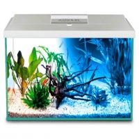 AQUARIUM SET 80 (balts)