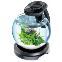 Tetra Duo Wafer Globe LED Black 6.8L