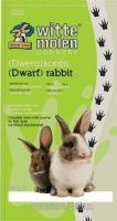 WITTE MOLEN Country (Dwarf) Rabbit